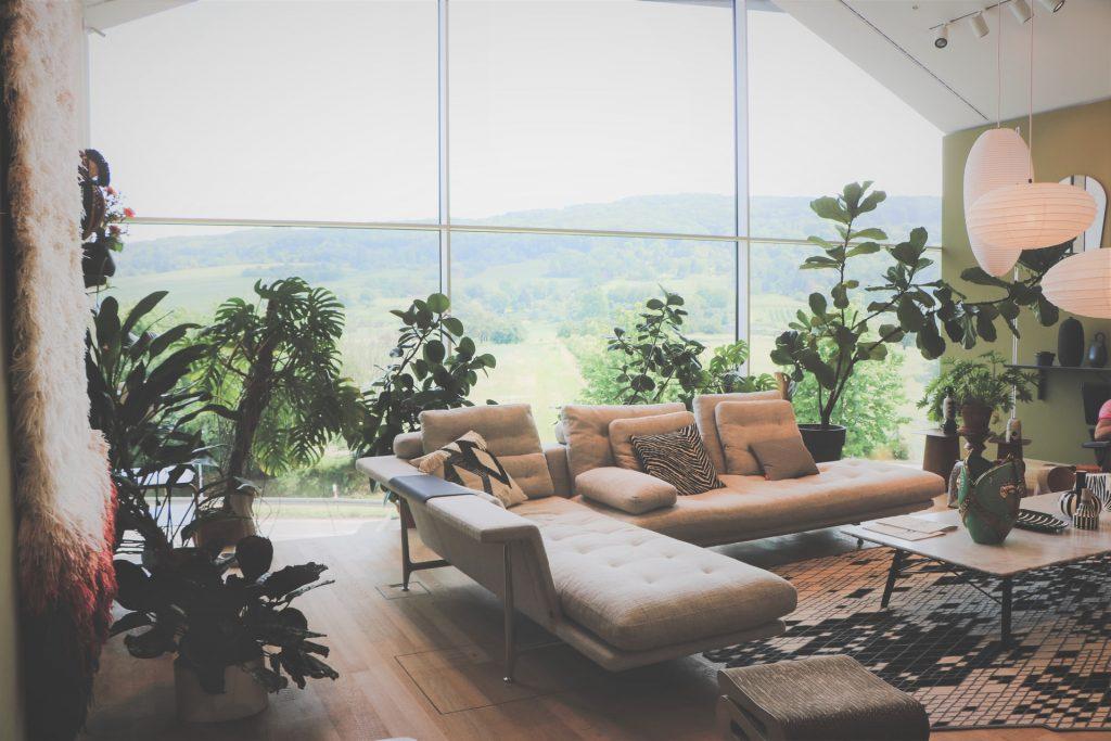 Porch Windows That Benefit Indoor Gardens